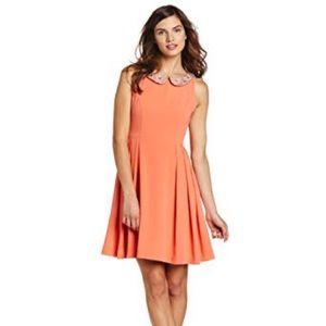 Eva Franco Poesy pansy dress size 6
